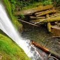 Camp Creek Falls.- Camp Creek Falls Hike