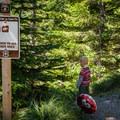 The trailhead to Whetstone Mountain.- Whetstone Mountain Hike