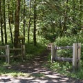 The main trailhead for Salmon Creek Trail.- Salmon Creek Trail