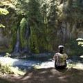 Salmon Creek above Salmon Creek Falls.- Salmon Creek Trail