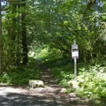 The upper trailhead for Salmon Creek Trail.- Salmon Creek Trail