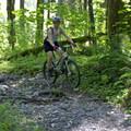 - Salmon Creek Trail