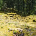 Native American vision quest pits can still be found among the moss and rocks.- Ruckel Ridge Loop Hike