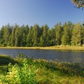 O'Neil Lake from Campground D.- Cape Disappointment State Park