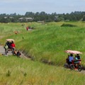 The 8.2-mile paved Discovery Trail through Long Beach.- Long Beach