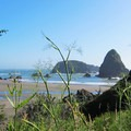 A view to Whaleshead Beach from the parking lot.- Whaleshead Beach