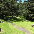 The picnic area at Whaleshead Beach.- Whaleshead Beach