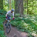 The bottom of Hardesty Mountain Trail.- South Willamette Trail + Lower Hardesty Mountain Bike Ride