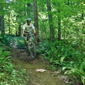 Catching air on the South Wilamette Trail.- South Willamette Trail + Lower Hardesty Mountain Bike Ride