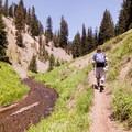 The Annie Creek Trail.- Annie Creek Canyon Loop Trail