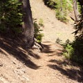 Switchbacks going down to the creek.- Annie Creek Canyon Loop Trail