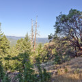 View to the West from the 'W' trail.- Cathedral Hills Trail System