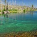 A cove along the lake's northern edge.- Waldo Lake