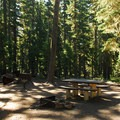 Typical site.- Waldo Lake, Shadow Bay Campground