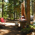 One of three walk-in campsites.- Waldo Lake, North Waldo Campground