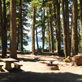 Typical campsite.- Waldo Lake, North Waldo Campground