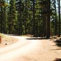 North Waldo Campground.- Waldo Lake, North Waldo Campground