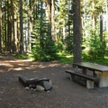Typical campsite.- Waldo Lake, Islet Campground