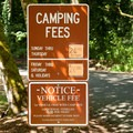 Camping fees have recently been raised.- Feyrer Campground