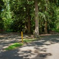 Sites are densely situated.- Feyrer Campground