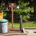 Waste facilities.- Feyrer Campground