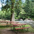 Feyrer Park has plenty of personal picnic areas near the water.- Feyrer Park