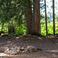 Unmanaged campsites near Fish Lake.- Fish Lake Campsites