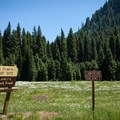 Lost Prairie Campground.- Lost Prairie Campground