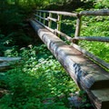 One of four bridges that cross the vacant riverbed.- McKenzie River Trail: Carmen Reservoir to Tamolitch Pool