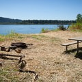 The single campsite on Reed Island State Park.- Reed Island State Park Campsite