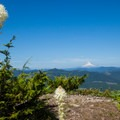 Mount Hood (11,250) and beargrass.- Table Rock