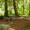 Typical site.- Three Bears Recreation Site