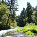 The lush valley feels equally verdant no matter what season on the White Salmon.- Middle White Salmon River