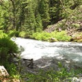 The trail along some Class II rapids.- Metolius River Trail West