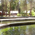 Wizard Falls Fish Hatchery.- Metolius River Trail West