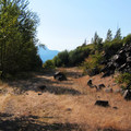 Trails wrapping around and through the peninsula.- Government Cove Peninsula