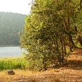 Pathways are flat, wide, and well-maintained.  Great for walking and casual bike riding.- Squaw Lakes Campground