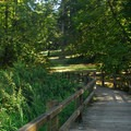 Bridge near Fir Grove Picnic Area.- Molalla River State Park