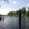 The Willamette River from the Molalla River State Park boat ramp.- Molalla River State Park