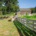 Garden and picnic area at the Manson Barn.- Champoeg State Park