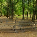 Picnic area at the Riverside Day Use Area.- Champoeg State Park