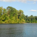 The Willamette River from Champoeg State Park.- Champoeg State Park