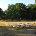 Picnic tables at the Oak Grove Day Use Area.- Champoeg State Park
