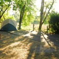 Typical campsite in the A Loop.- Champoeg State Park Campground