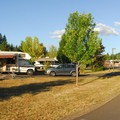 Typical campsite in the B Loop.- Champoeg State Park Campground