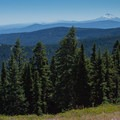 The view south to Mount Jefferson (10,497') with Three Sisters (10,358') barely visible. - Gunsight Ridge Trail