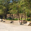 Campsites near the parking turn-around at Santiam Flats Campground.- Detroit Lake, Santiam Flats Campground