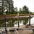 Deer Island from the City of Nehalem Public Docks.- North Fork of the Nehalem River