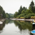 Paddling this west channel isn't advised at low tide as there is no through access.- North Fork of the Nehalem River