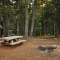 Typical site.- Camp Ten Campground